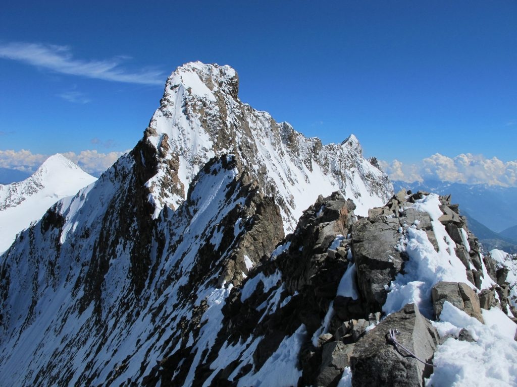 Hochtouren Bernina Biancograt © Alex Klampfer Bergführer Vorarlberg